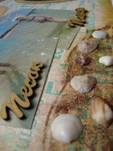 Страница про Кипр - морские ракушки