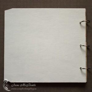Обратная сторона обложки фотоальбома на кольцах про 2012 год