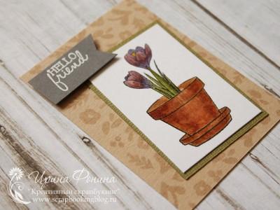 """""""Домашние цветы"""" - одна из карточек"""