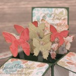 Открытка-коробочка - box card - бабочки