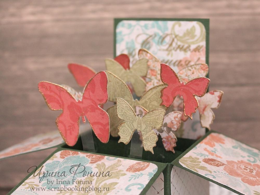 Коробочка своими руками для бабочки 469