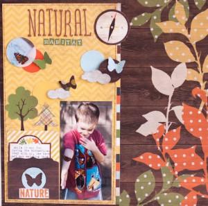 Текстура дерева - страничка о природе