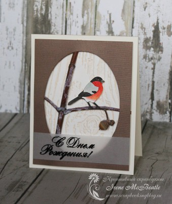 Зимняя открытка с натуральной веткой