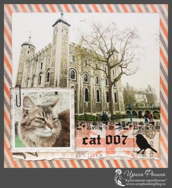 Страница - Cat 007